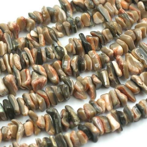 (abalone006) Abalone red back chips - Scottsdale Bead Supply