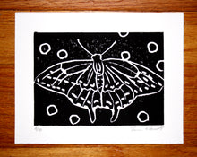 """Butterfly"" 5"" x 7"", Limited Edition Print of 10"