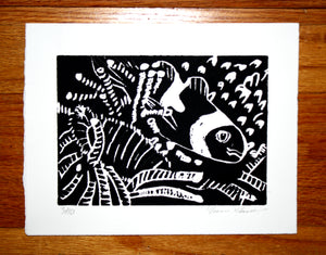 """Nemo"" 5"" x 7"", Limited Edition Print of 10"