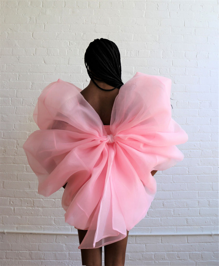 Princess Bow Dress
