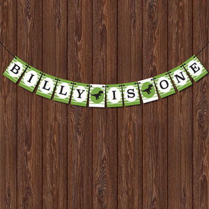 Personalised Dinosaur Kids Birthday Banner, Bunting
