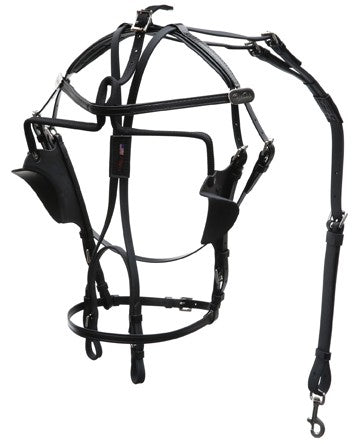International Kant See Back Bridle - 1540-PCN