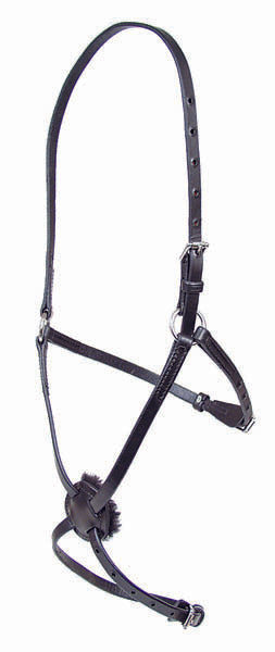 Figure 8 Leather Race Halter - 223B