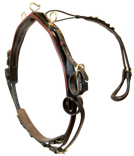 Platinum Performance Roadster Pony Show Harness - 2200