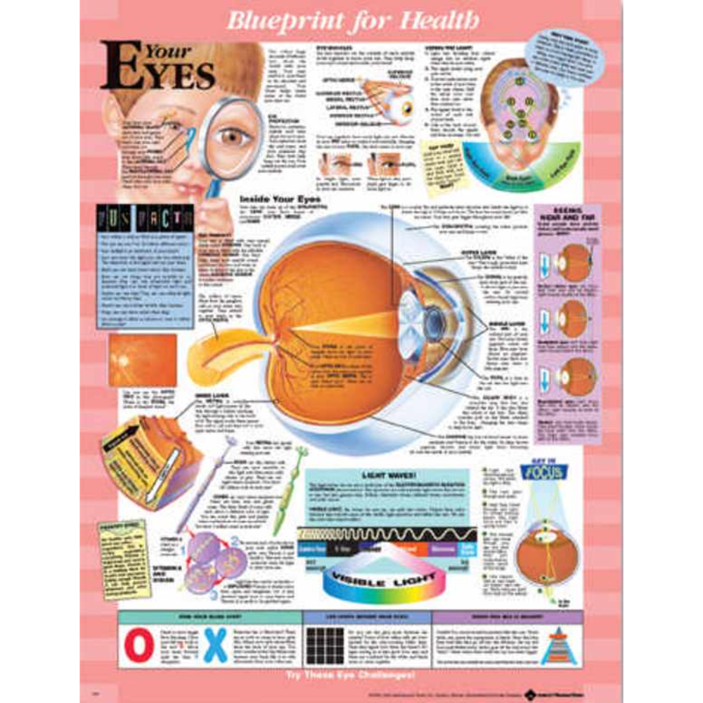 Blueprint for Health Your Eyes Chart