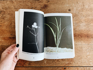 Aquarium Plants Vintage Book