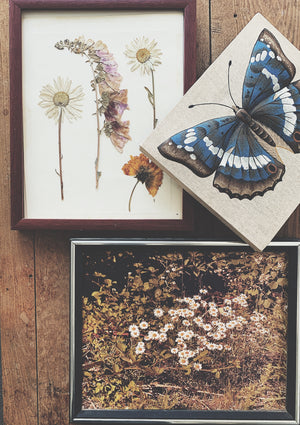 Vintage Butterfly Fabric Art