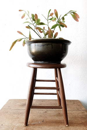 Large Stoneware Plant Pot