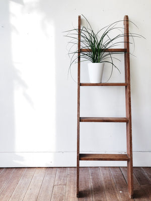 Vintage Wooden Bunk Ladder
