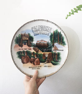 Vintage California Redwoods Plate