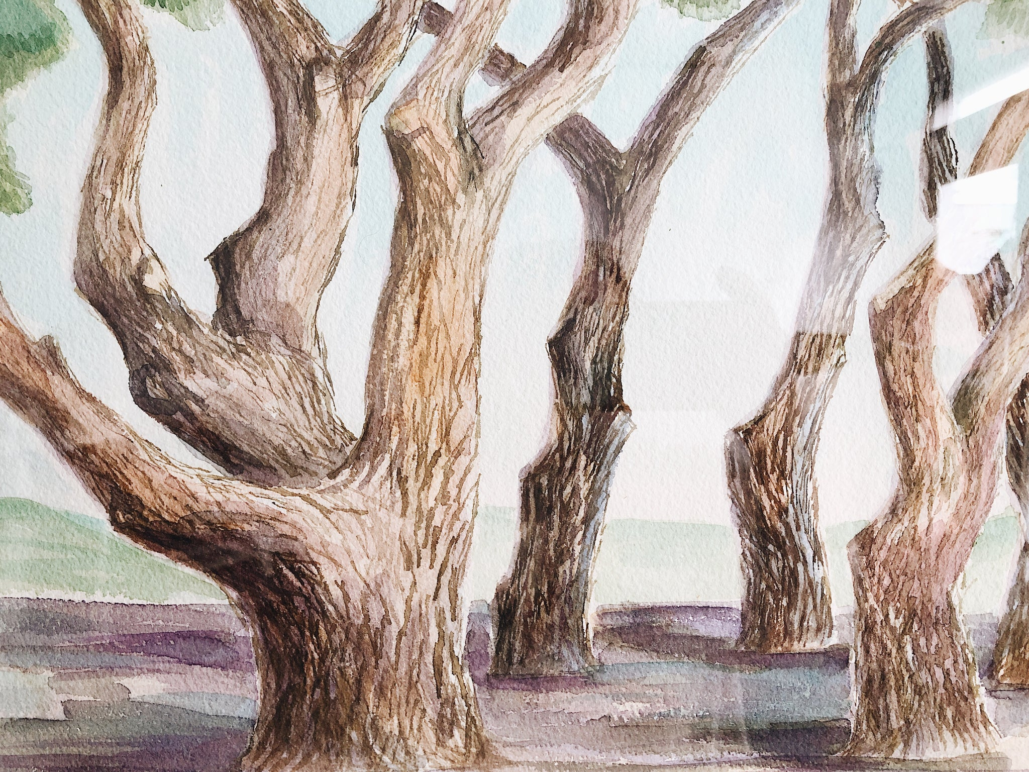 Vintage Tree Grove Landscape Painting
