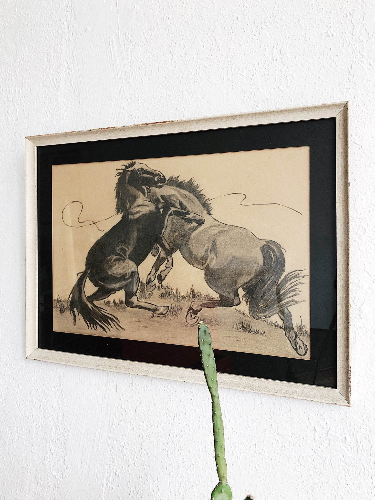 Vintage Original Stallion Charcoal Drawing