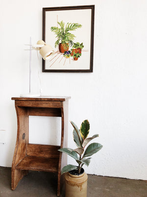 Vintage Houseplant Embroidery