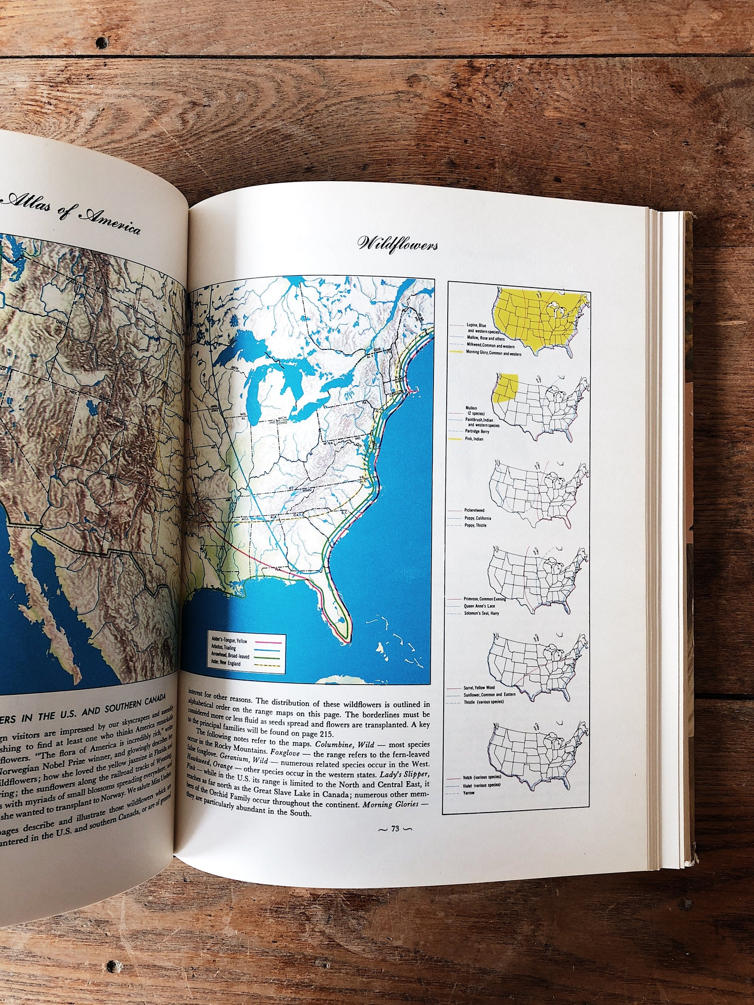 Vintage Hammond's Nature Atlas