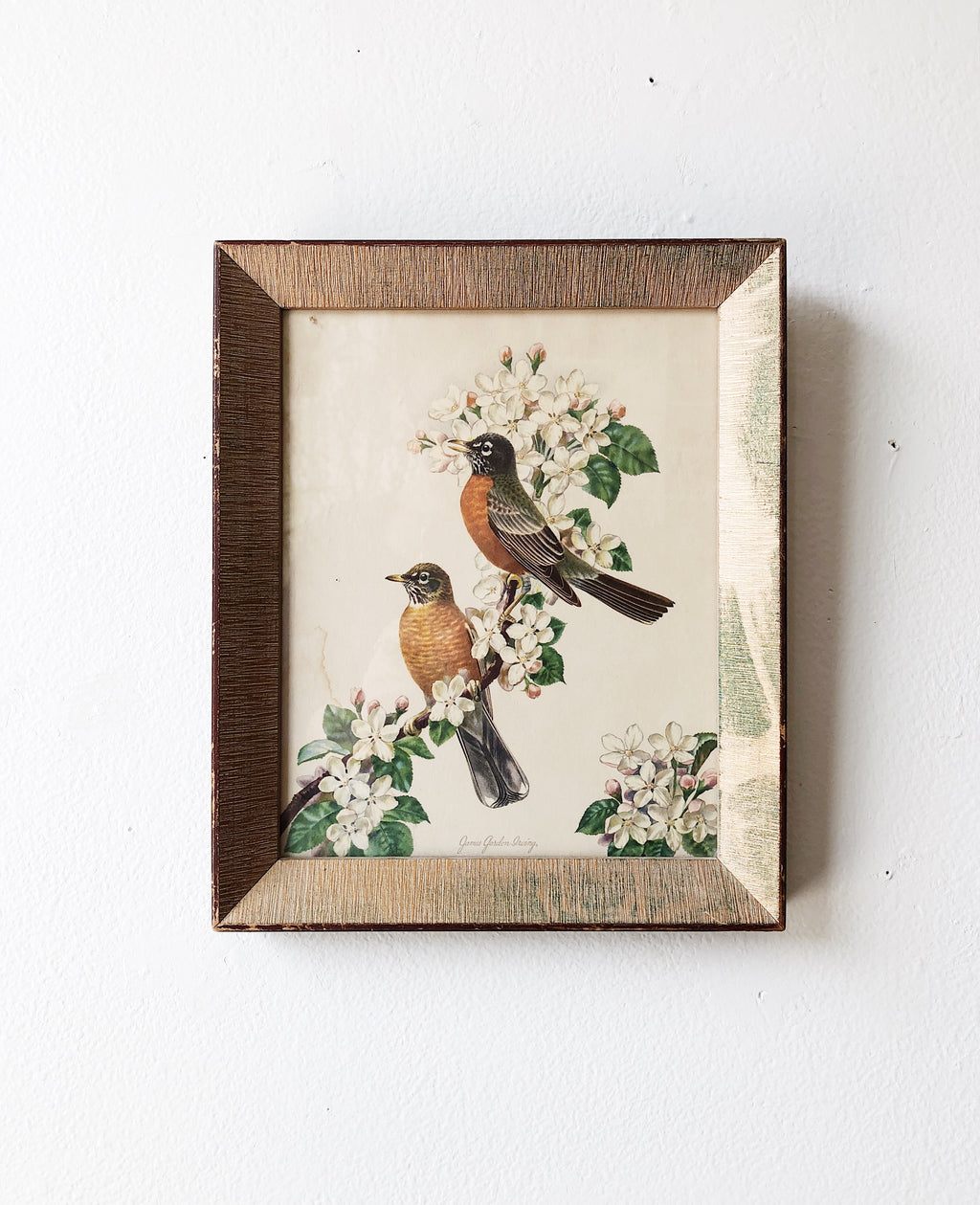 Vintage Framed Book Plate
