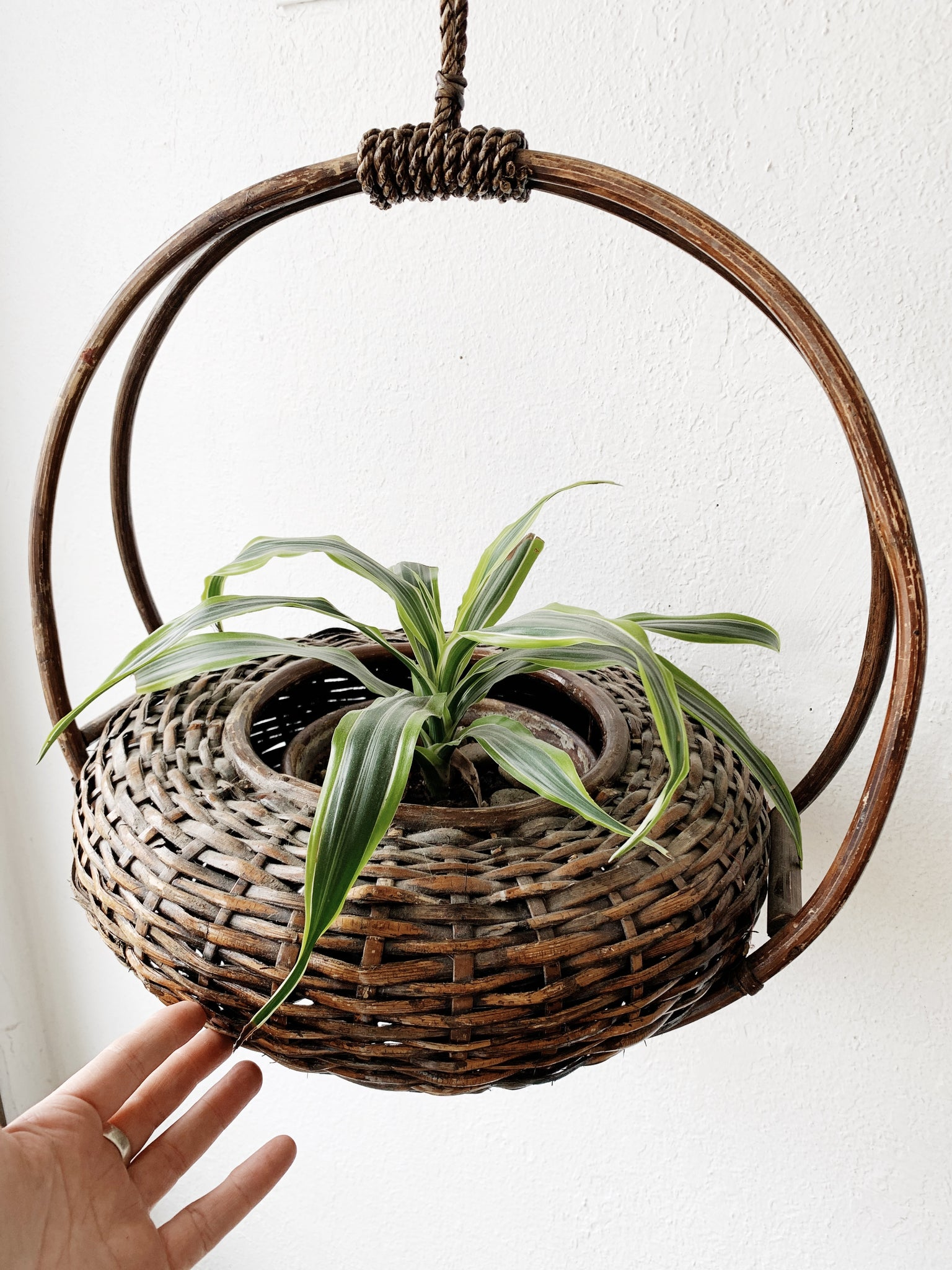 Vintage Hanging Basket Planter
