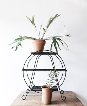 Mid Century Circular Plant Stand