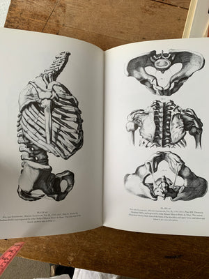 Anatomy of Humans Vintage Hard Cover