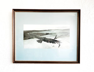 Vintage Framed Paul Carey Bird of Prey Art Print