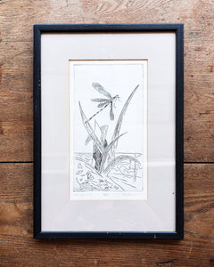 Original Dragonfly Engraving