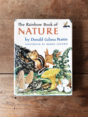Vintage Rainbow Book of Nature