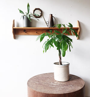 Vintage Wood Peg Shelf