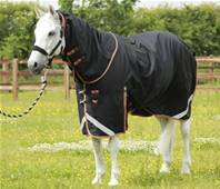 PEI Titan 300g Turnout Rug with Neck Cover