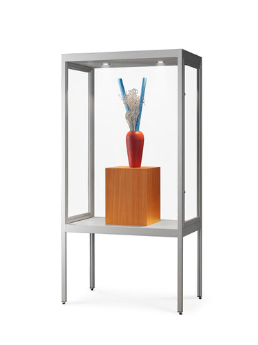 Olympus V8 Light 1000 Dustproof Glass Display Cabinet on Legs