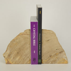 Petrified Wood Book Ends