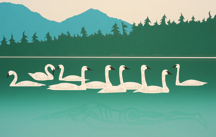 SWIM FOR SWANS