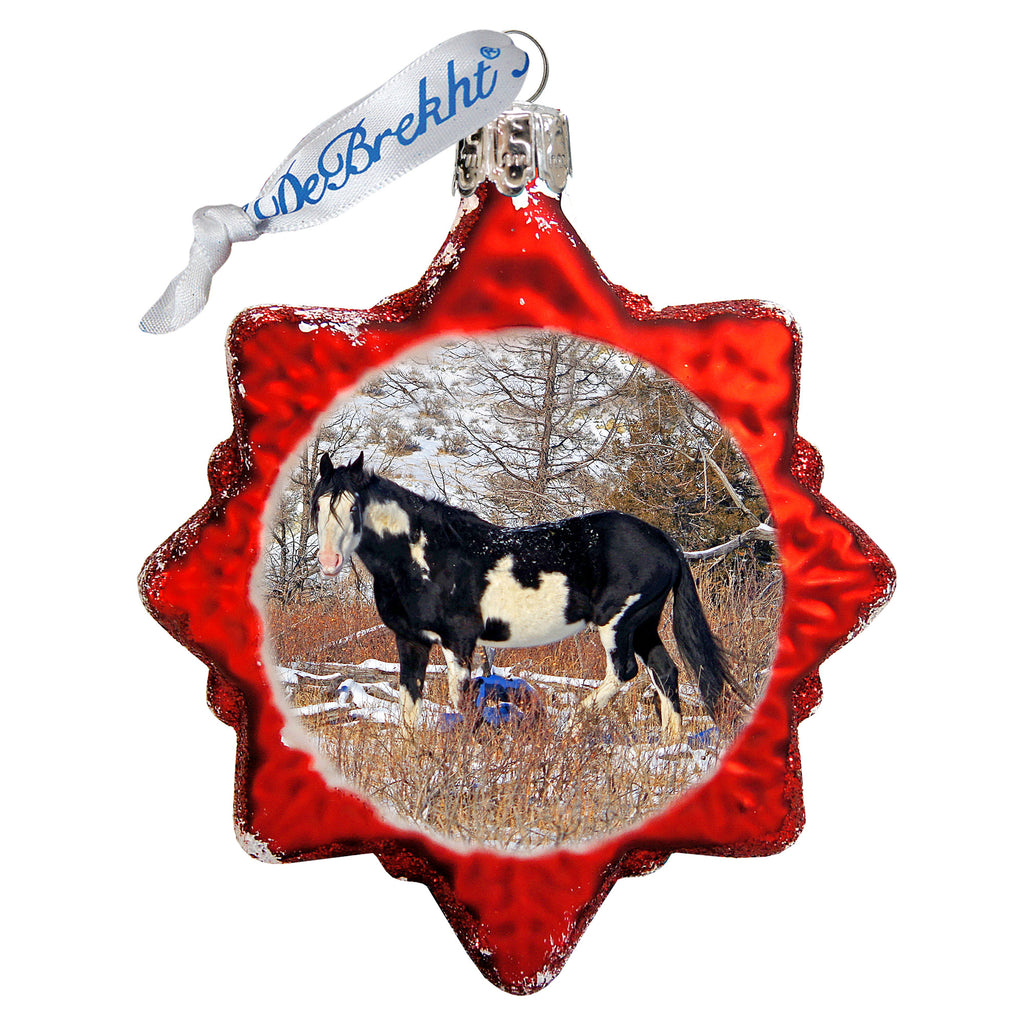 Chasing Horses 2020 Glass Ornament and Matching Christmas Card