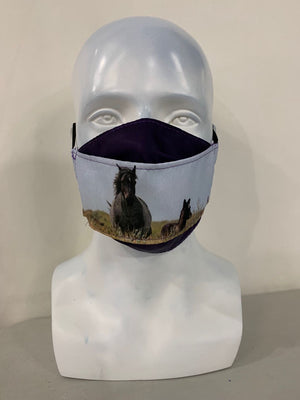 Chasing Horses Custom Face Masks