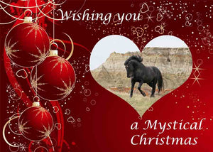 Chasing Horses 2020 Christmas Cards - singles