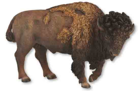 American Bison by Breyer