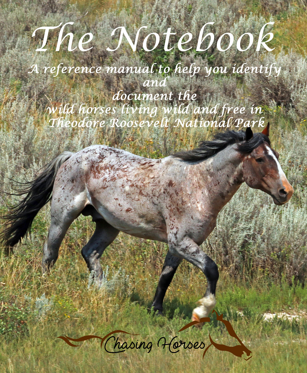 The Notebook PDF - Pre-order