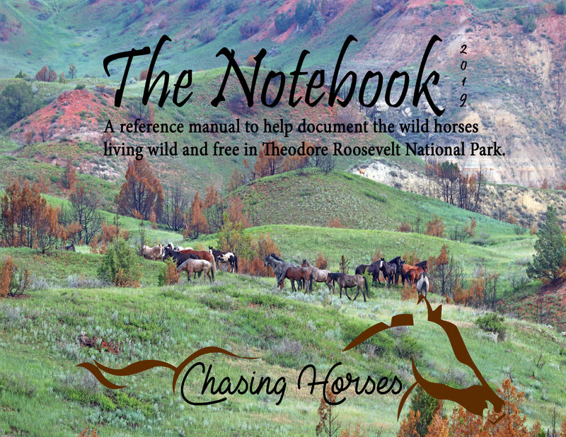 The Notebook: A Reference Manual to help document the wild horses living wild and free in Theodore Roosevelt National Park