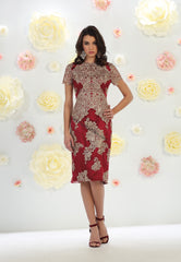 Short Sleeve Lace & Satin Dress- LAMQ1478