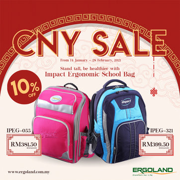 Ergoland Chinese New Year Impact sales