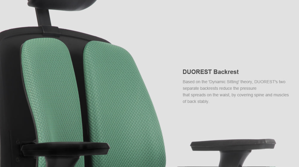 Alpha ergonomic chair features green backrest