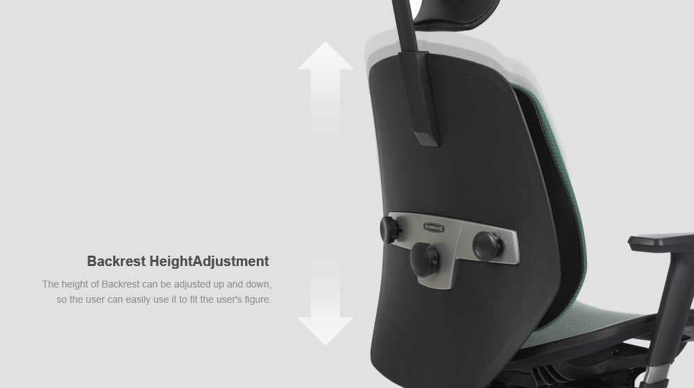 Alpha ergonomic chair features backrest height adjustment