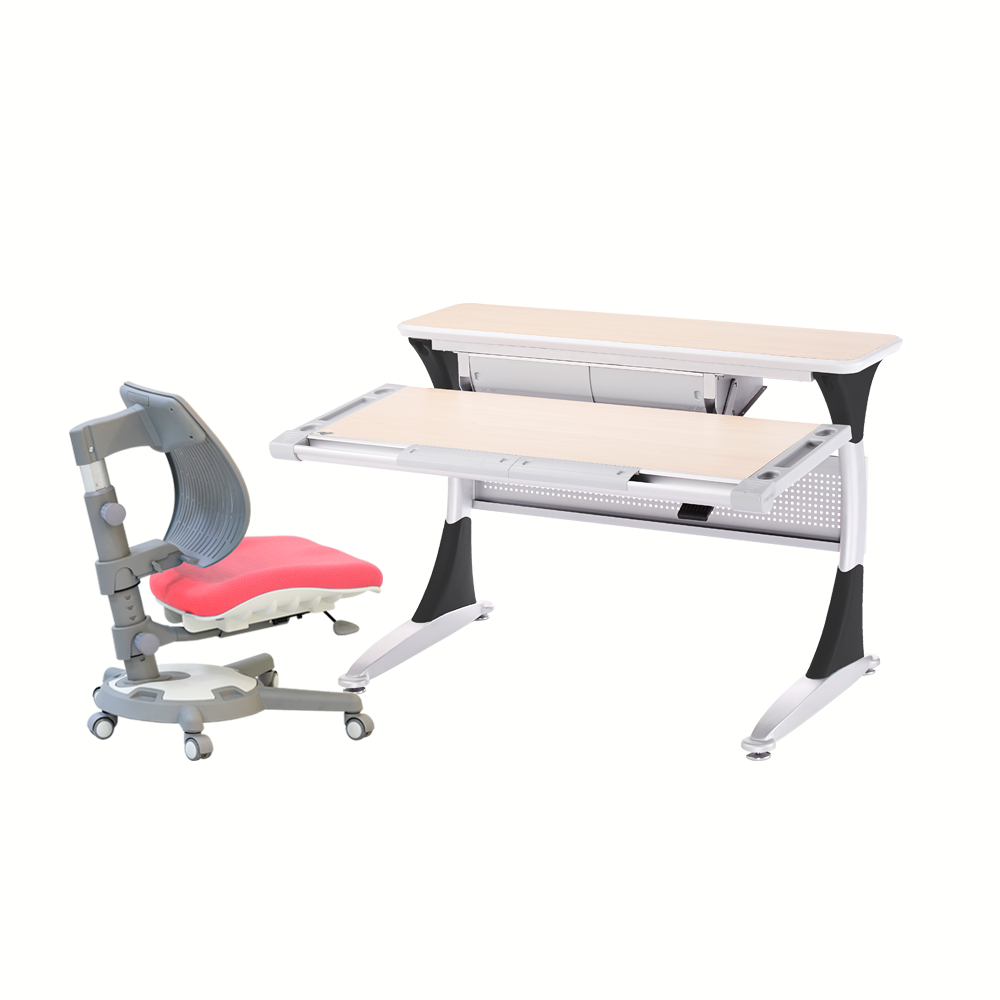 Ergo-Smart Desk + Ultra Back Chair