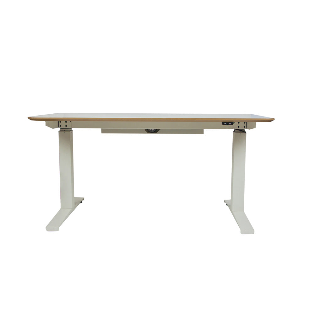 ED101 Electrical Sit stand Desk 4