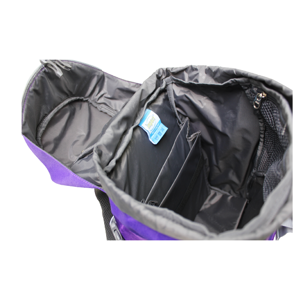 Impact Backpack (IPEG-226) Purple 3