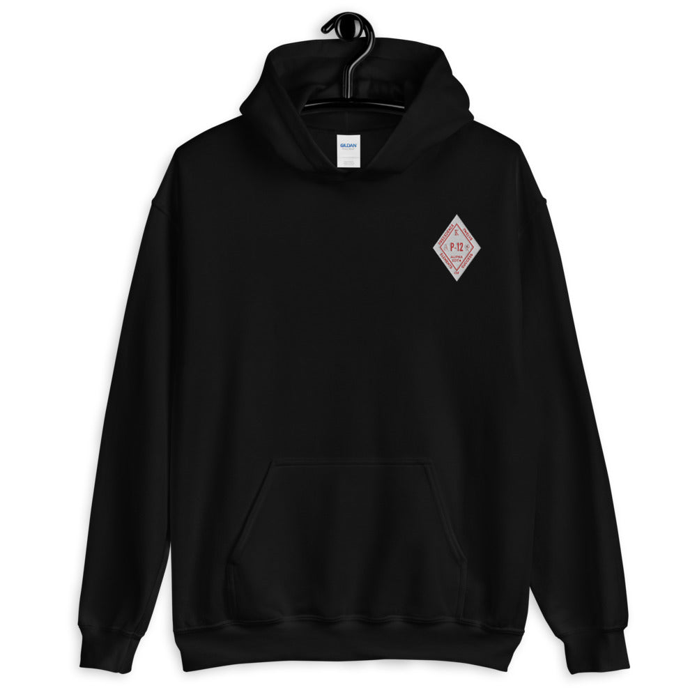 KAY Alpha Iota Chapter CHEST Unisex Hoodie