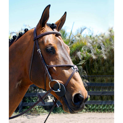 Hadfield's Raised Fancy Stitched Padded Figure 8 Jumper Bridle on Horse