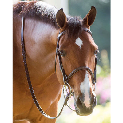 Hadfield's Raised Fancy Stitched Padded Hunter Bridle on Horse