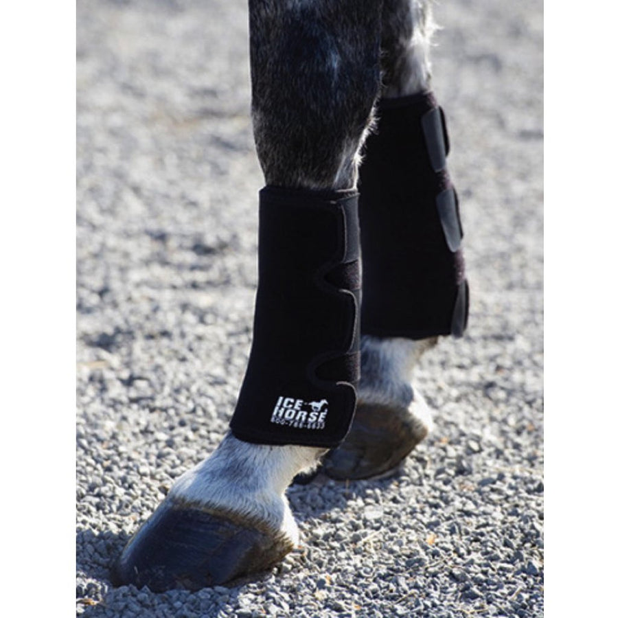 Ice Horse Therapeutic Tendon Wrap Pair