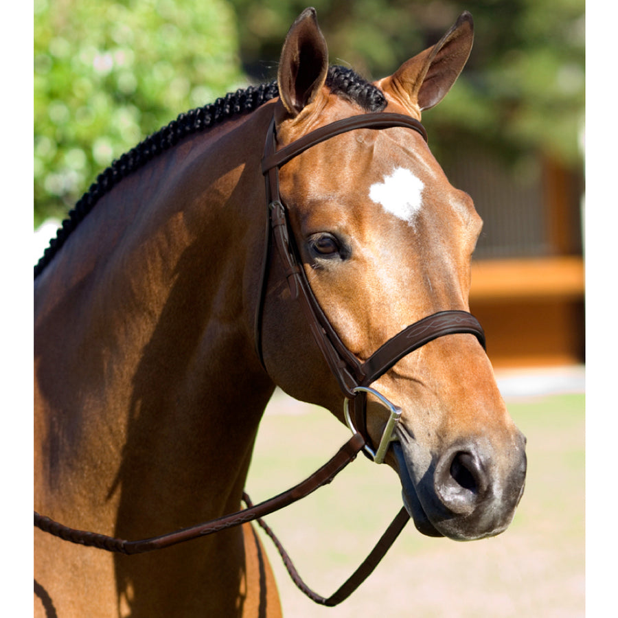 Pessoa Rodrigo Raised Fancy Stitched Wide Noseband Bridle