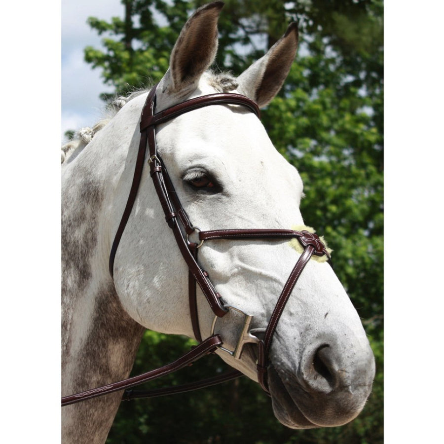Red Barn Equinox Raised Fancy Stitched Figure 8 Jumper Bridle