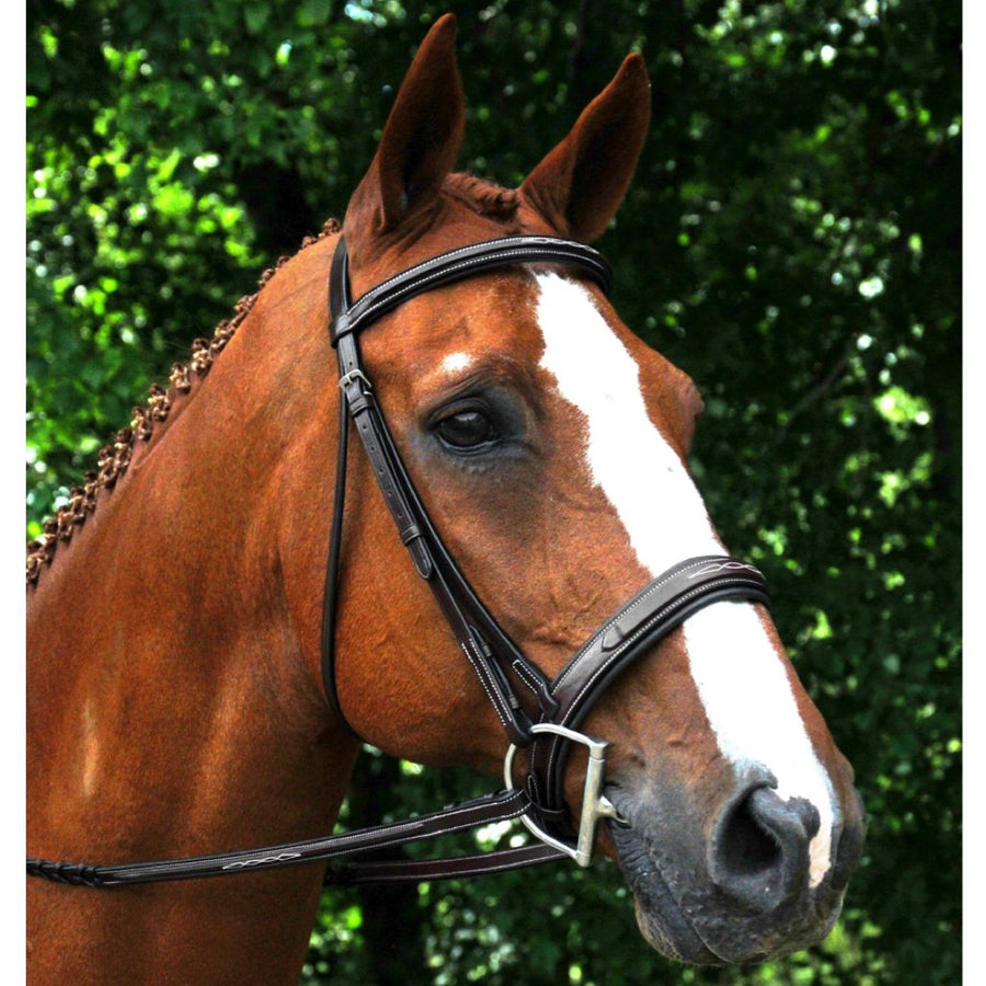 Red Barn Tryon Raised Fancy Stitched Padded Wide Noseband Bridle
